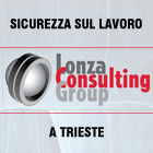 Lonza Consulting Group - sicurezza a 360 gradi