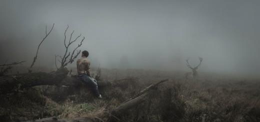 Federico Sciuca - The Call of the Wild