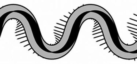 il-passo-del-serpente