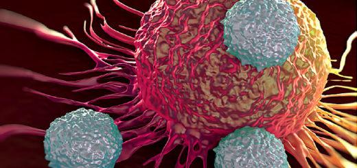 cancro tumori proteina p53 mutata Università di Trieste