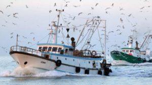 pescherecci pesca pescatori