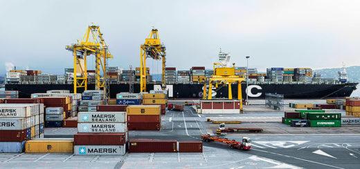 Molo VII Porto di Trieste