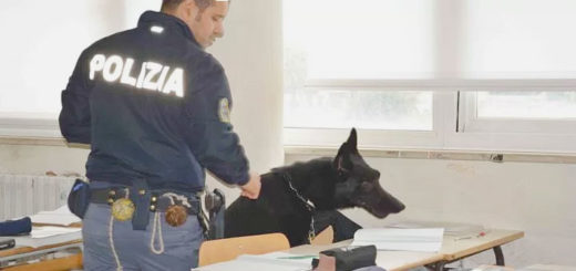 cane antidroga Polizia scuola