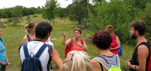 visita guidata Carso Trebiciano