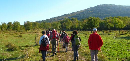 escursione Basovizza e Monte Cocusso