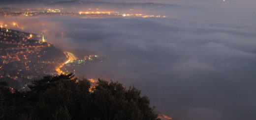 nebbia a Trieste, 21/02/2019