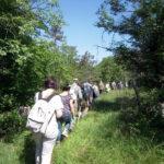 Escursione nel Carso
