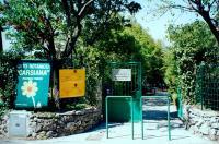 carsiana ingresso