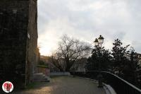 trieste - chiesa di san silvestro in controluce
