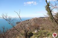 Golfo di Trieste e Carso 6 febbraio 2014