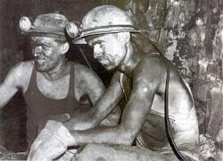 minatori arsia