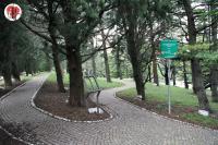 Trieste parco della rimembranza