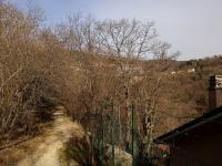 parco villa giulia 05