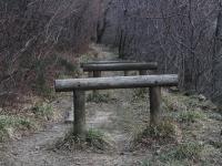 parco villa giulia 15