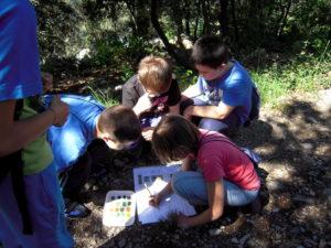 escursione didattica bambini Cooperativa Curiosi di Natura