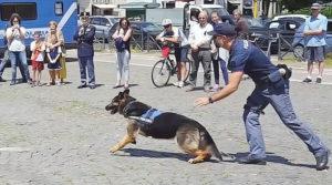 unità cinofile Polizia