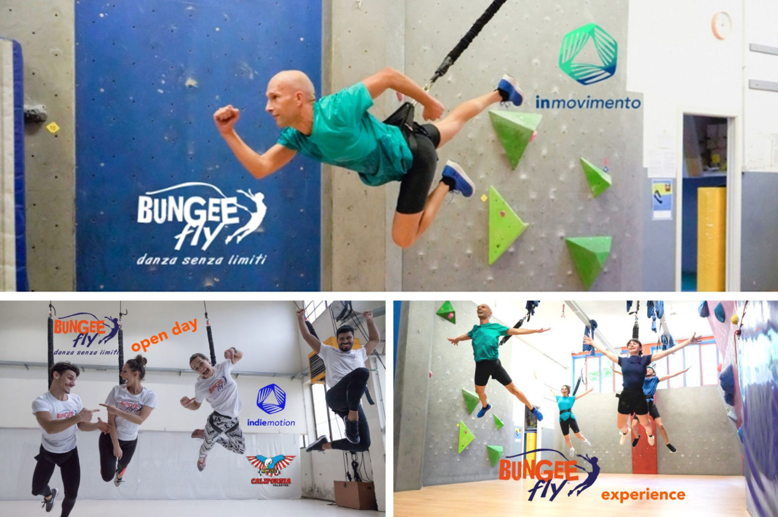 Bungee-Fly