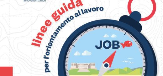 linee guida per l'orientamento al lavoro