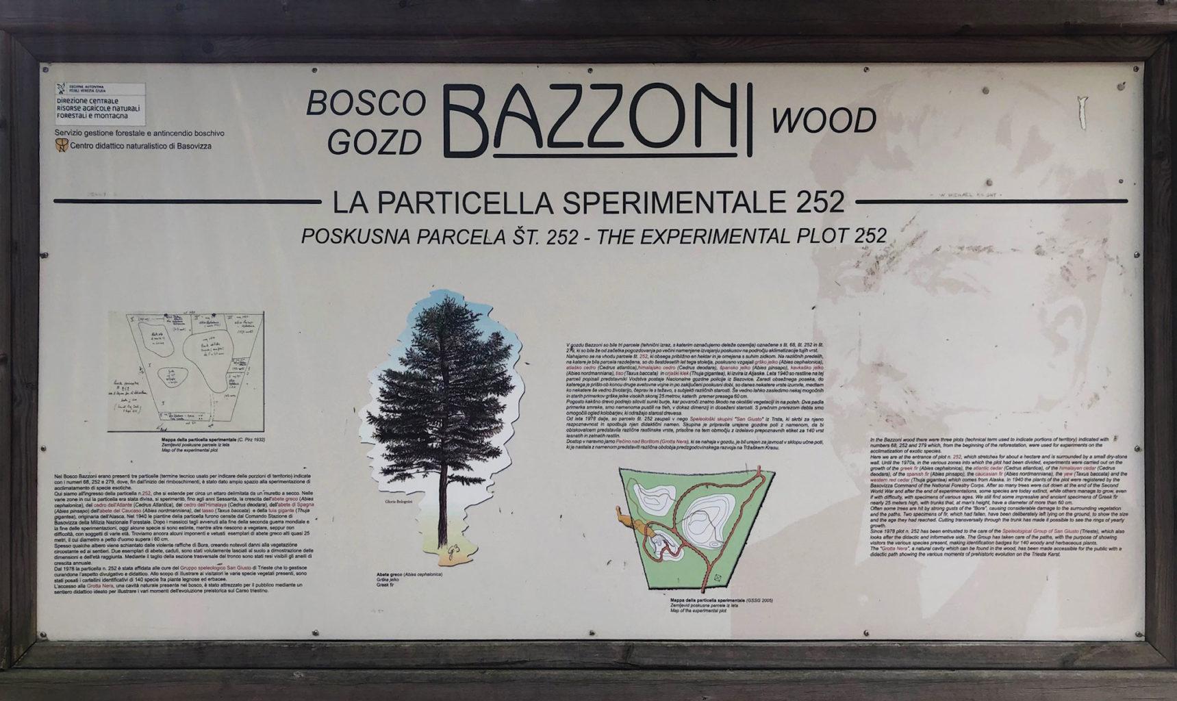 Bosco Bazzoni cartello