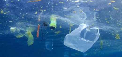 rifiuti marini mare inquinamento