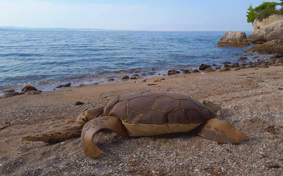 tartaruga Miramare