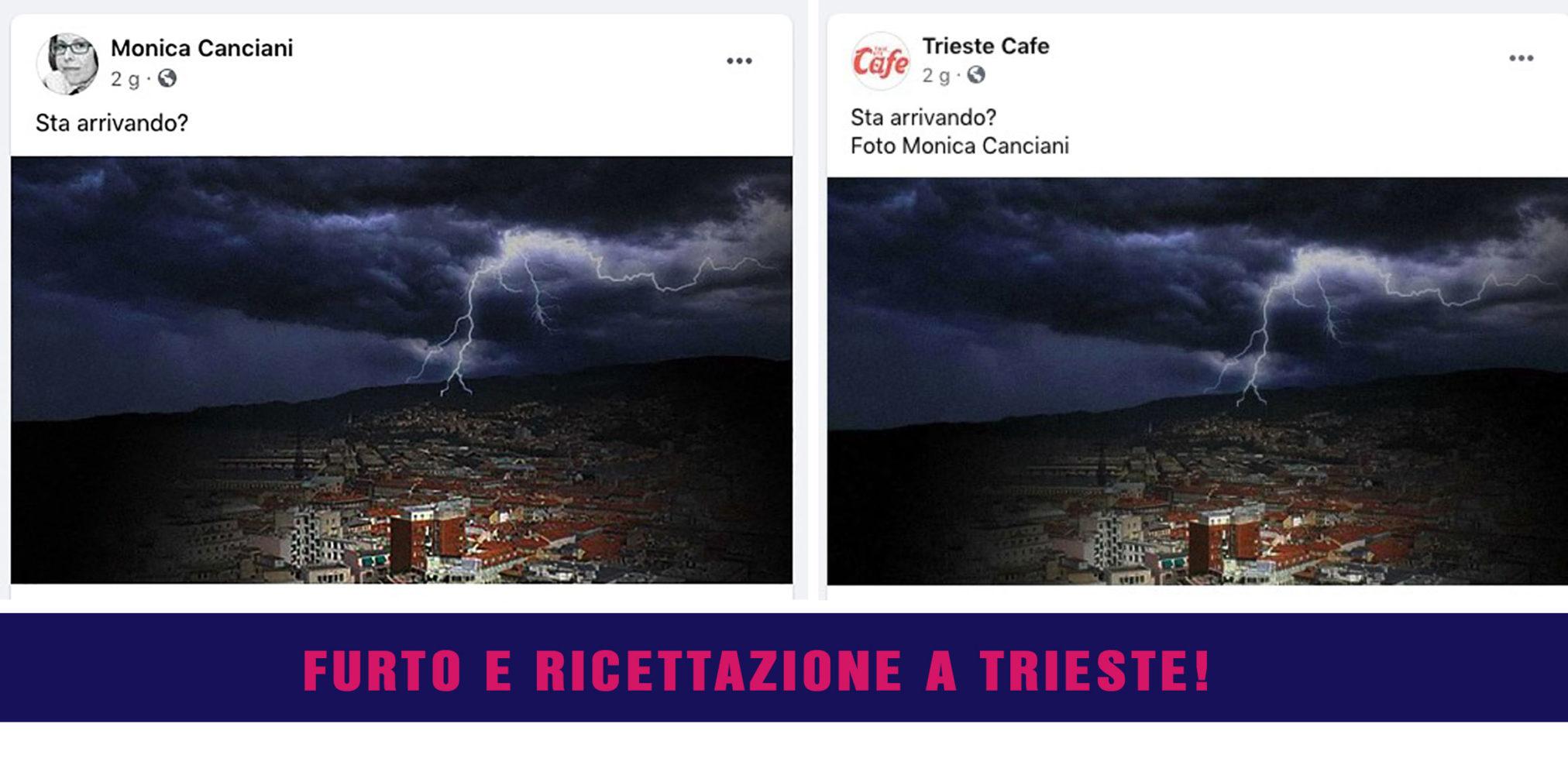 Monica Canciani furto foto e Trieste Cafe