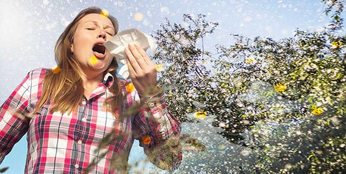 allergia pollini polline spore fungine