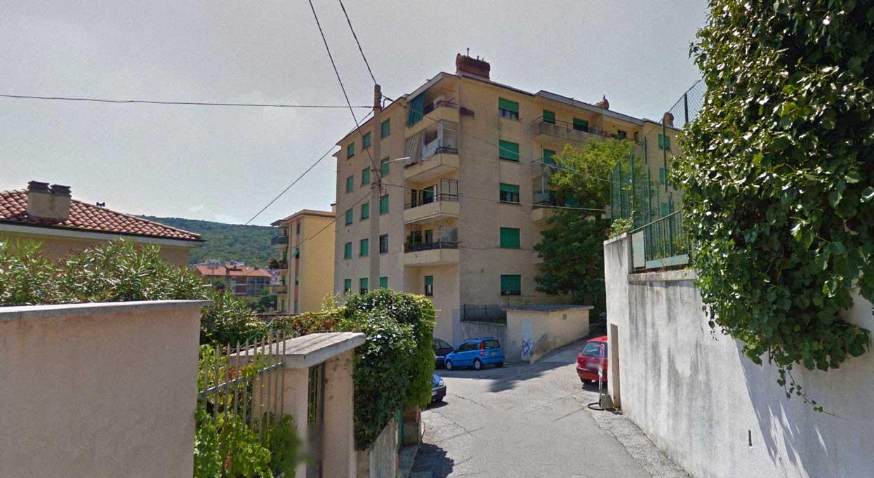 Via del Pinturicchio Trieste acacia