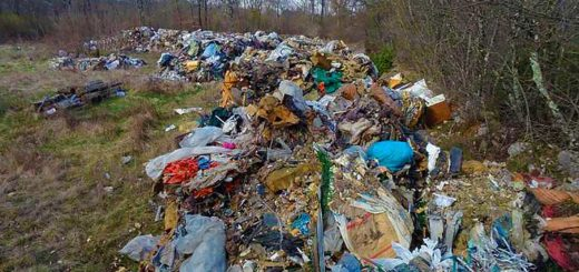 rifiuti in Carso