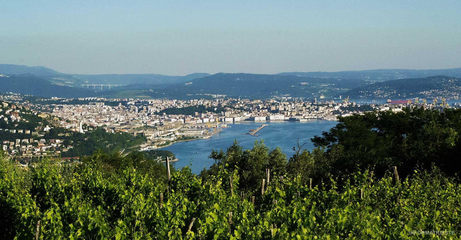 Trieste panorama 2020