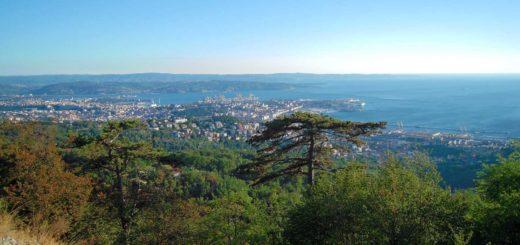 Trieste altipiano panoramico