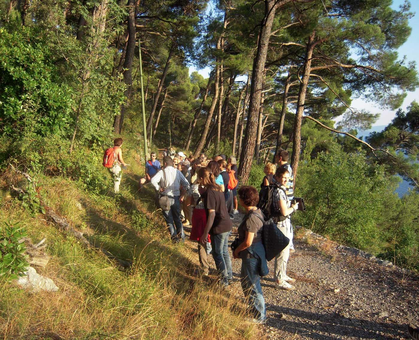 escursione via della Salvia Trieste