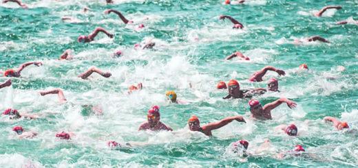 Barcolana Nuota nuotatori Trieste